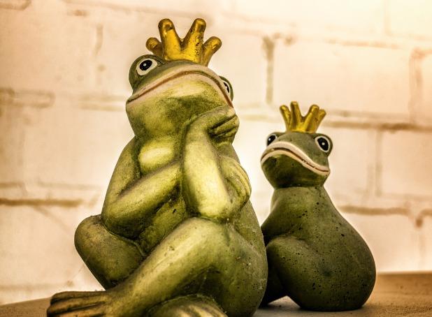 frog-1709324_1920